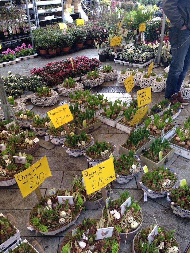 Blumenmarkt Enschede