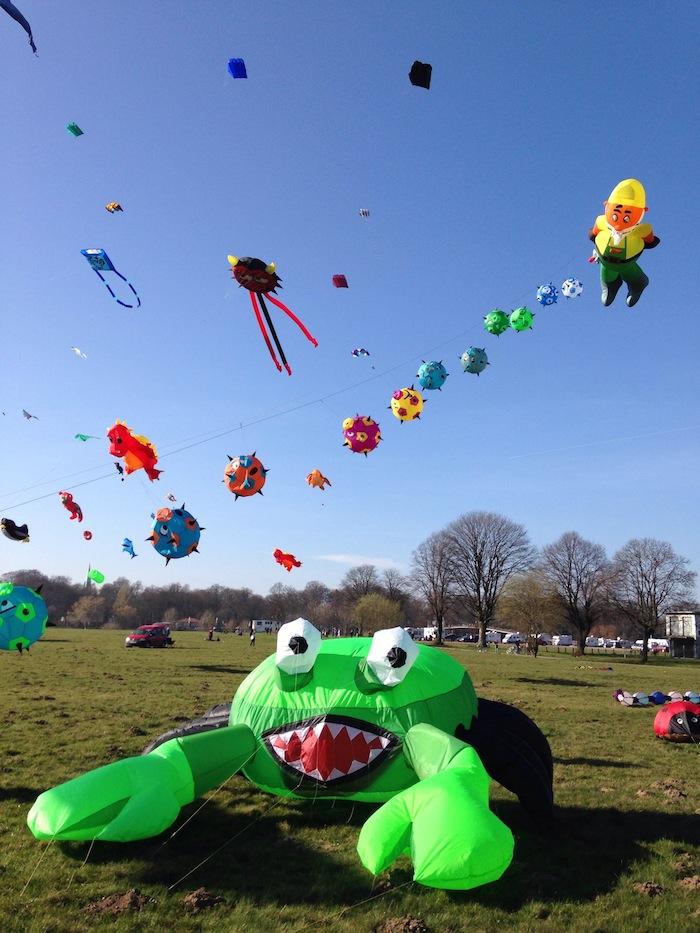 Drachenfest auf Kanzlers Weide in Minden