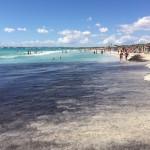 Es Trenc - der schönste Gay-Strand für Schwule auf Mallorca