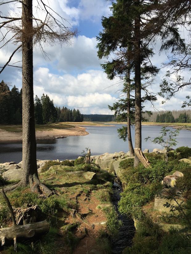 Harz-Wanderung um den Oderteich