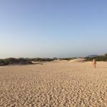 Gayurlaub Fuerteventura: Tipps für schwule Reisen