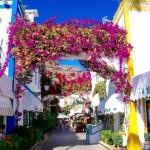 Puerto de Mogán – das kleine Venedig auf Gran Canaria