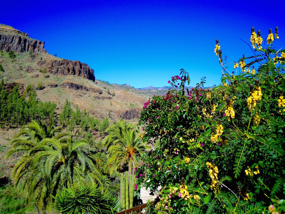 Gran Canaria - Wo ist es am schönsten?