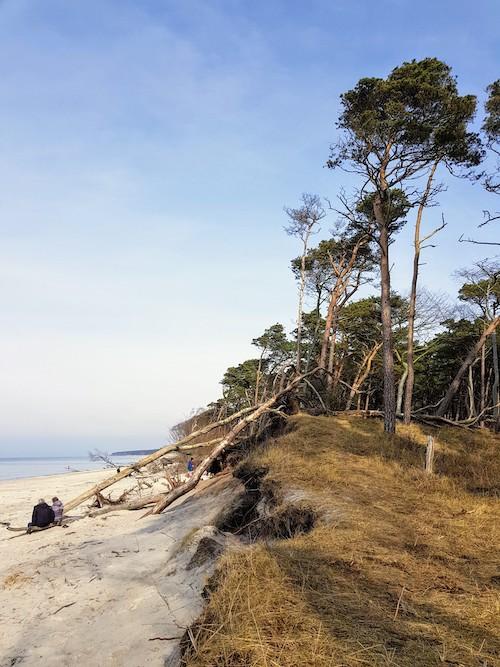 Ein Muss auf Ostsee-Gayreisen: Darßer Weststrand