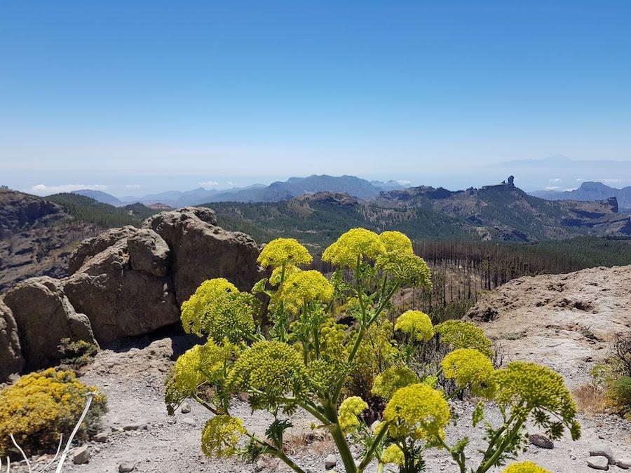 Der höchste Fotospot auf Gran Canaria