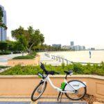 Radtour in Abu Dhabi: Die Innenstadt per Fahrrad erkunden