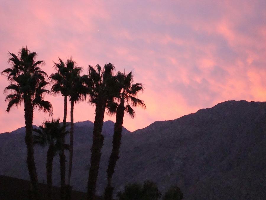 Gay-Reisen Palm Springs: Ein Traum für schwule Männer!