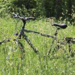 Nacktradeln: Darf man nackt Fahrrad fahren?