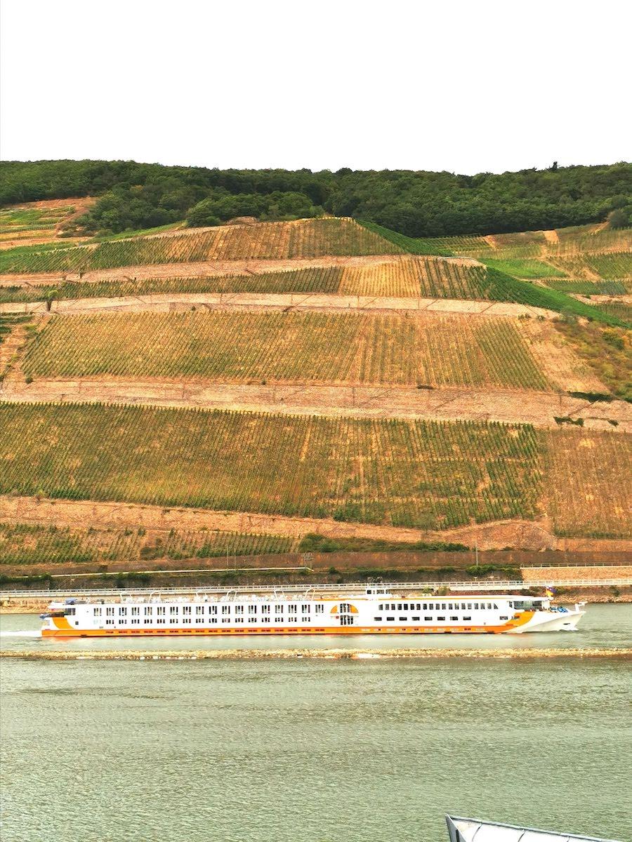 Bingen am Rhein: Blick aus unserem Zimmer im NH Hotel