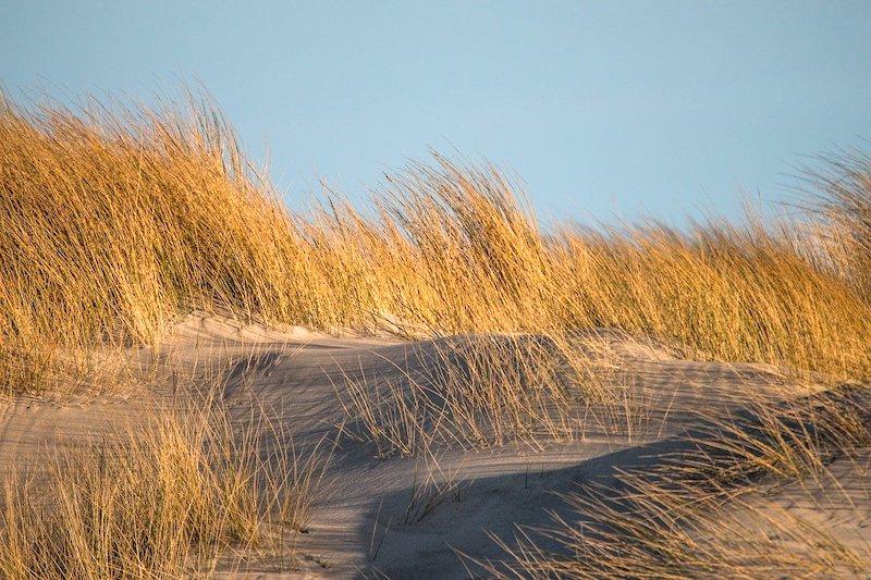 FKK-Urlaub Nordsee: Nacktbadestrände & Campingplätze für Nudisten