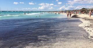 Playa Es Trenc: Bester Gay-Strand für Schwule auf Mallorca